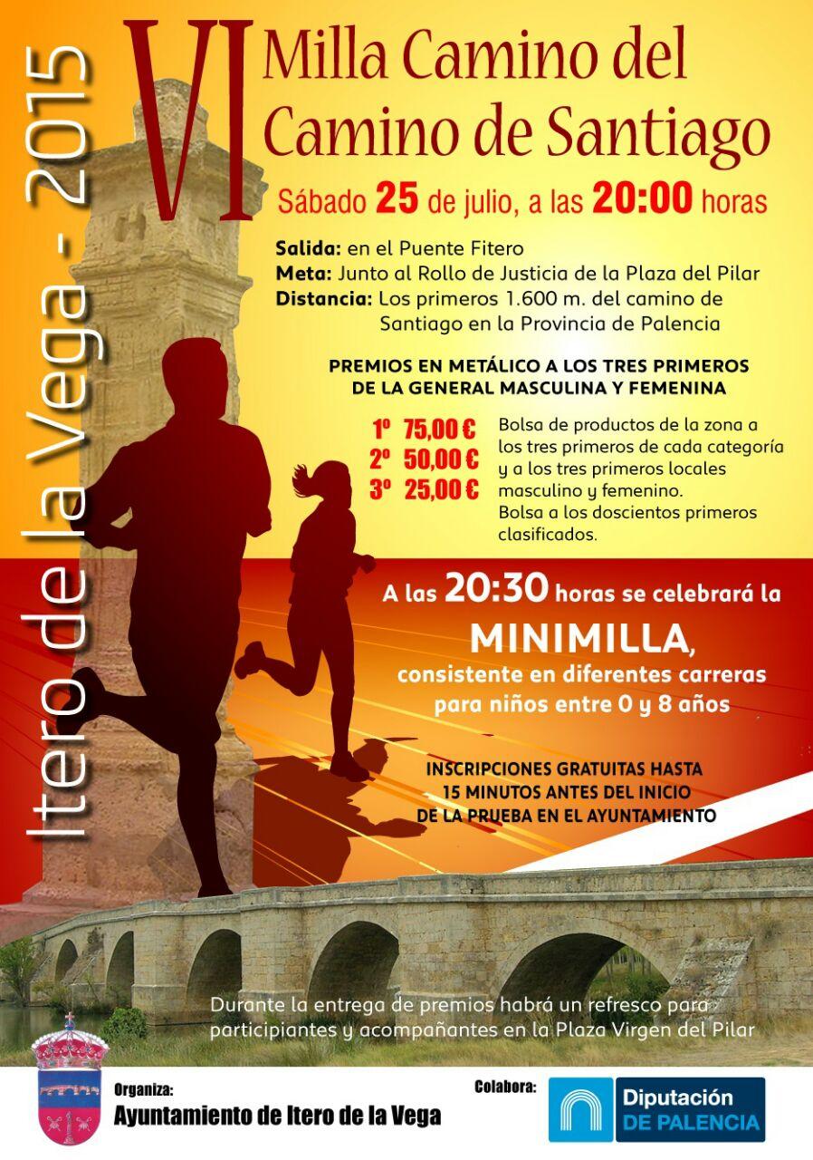 VI Milla Camino del Camino de Santiago